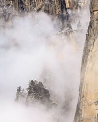 Rising From the Mist