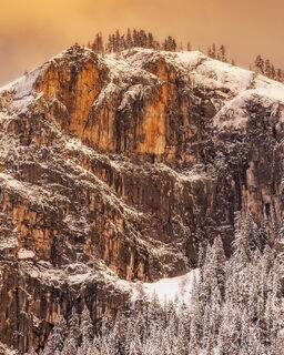 Evening Glow in Yosemite