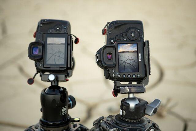 Canon eos R vs 5D IV in field