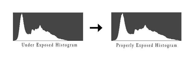 Expose to the right histogram