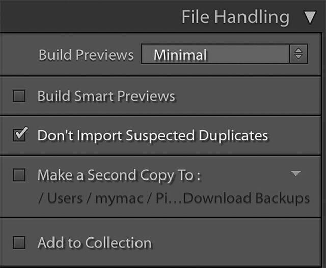 File handling menu in Lightroom classic
