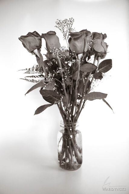 vertical, sepia, flowers