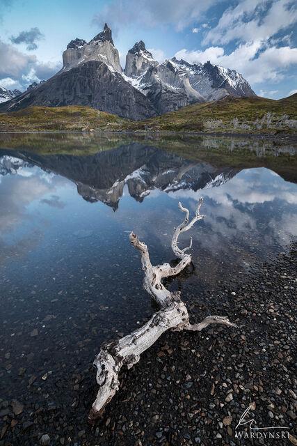Peaceful Torres Del Paine