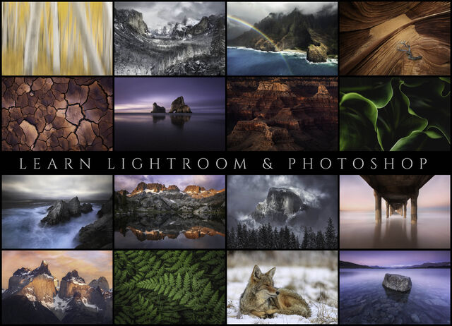 Learn Lightroom and Photoshop