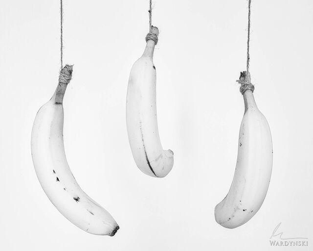 Three Hanging Bananas
