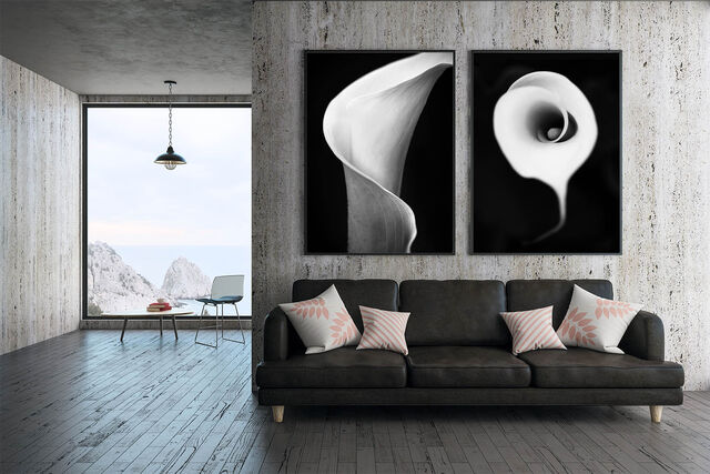 high end Fine art photography double vertical prints
