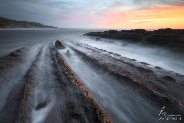 Prehistoric Shore
