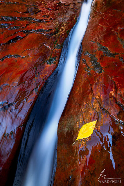 Where Water Flows II