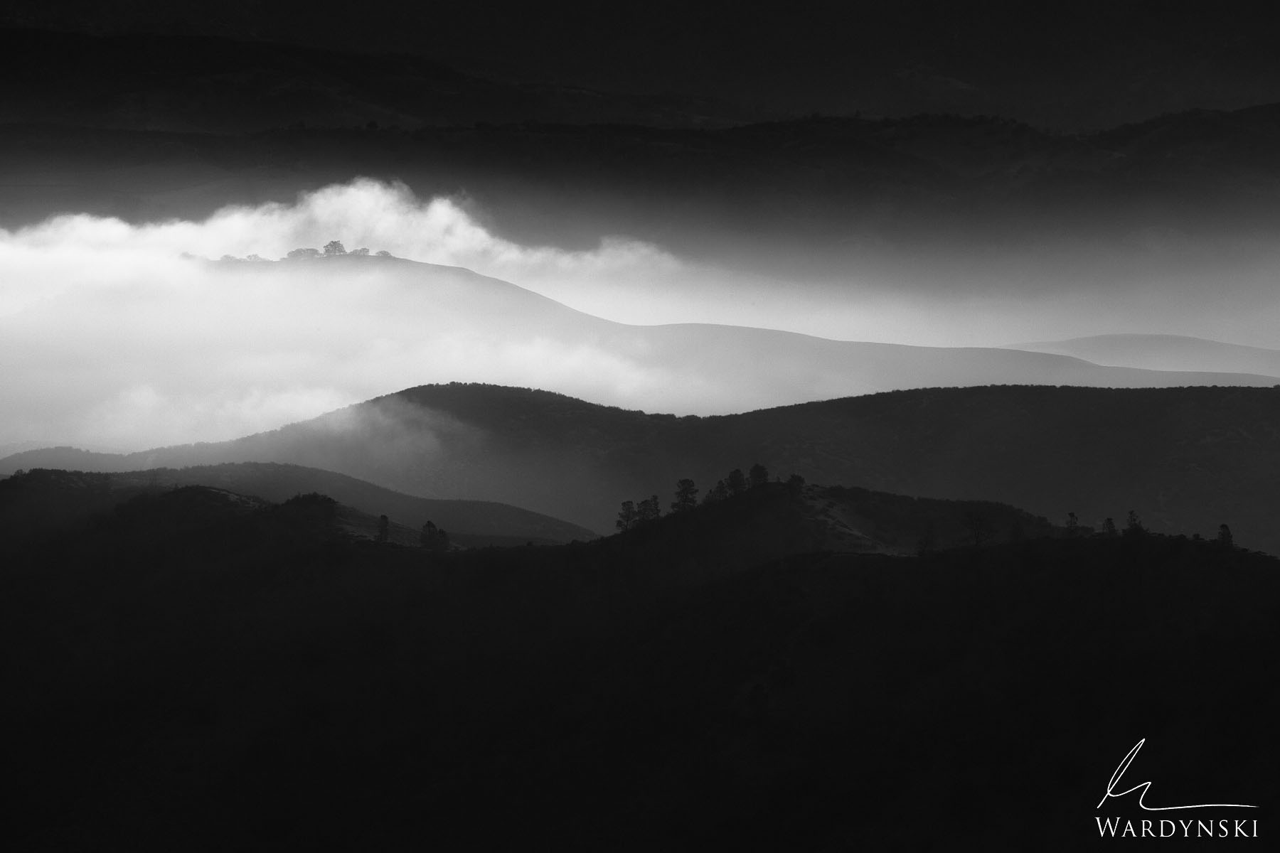 Black and White Fine Art Print | Limited Edition  Dramatic fog rolls through the foothills of Central California not far from...