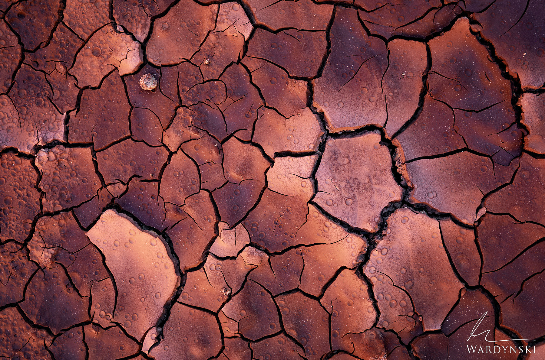 Fine Art Print | Limited Edition of 100  Cracked mud tiles and rain creators make wonderful textures on the red dirt floor of...