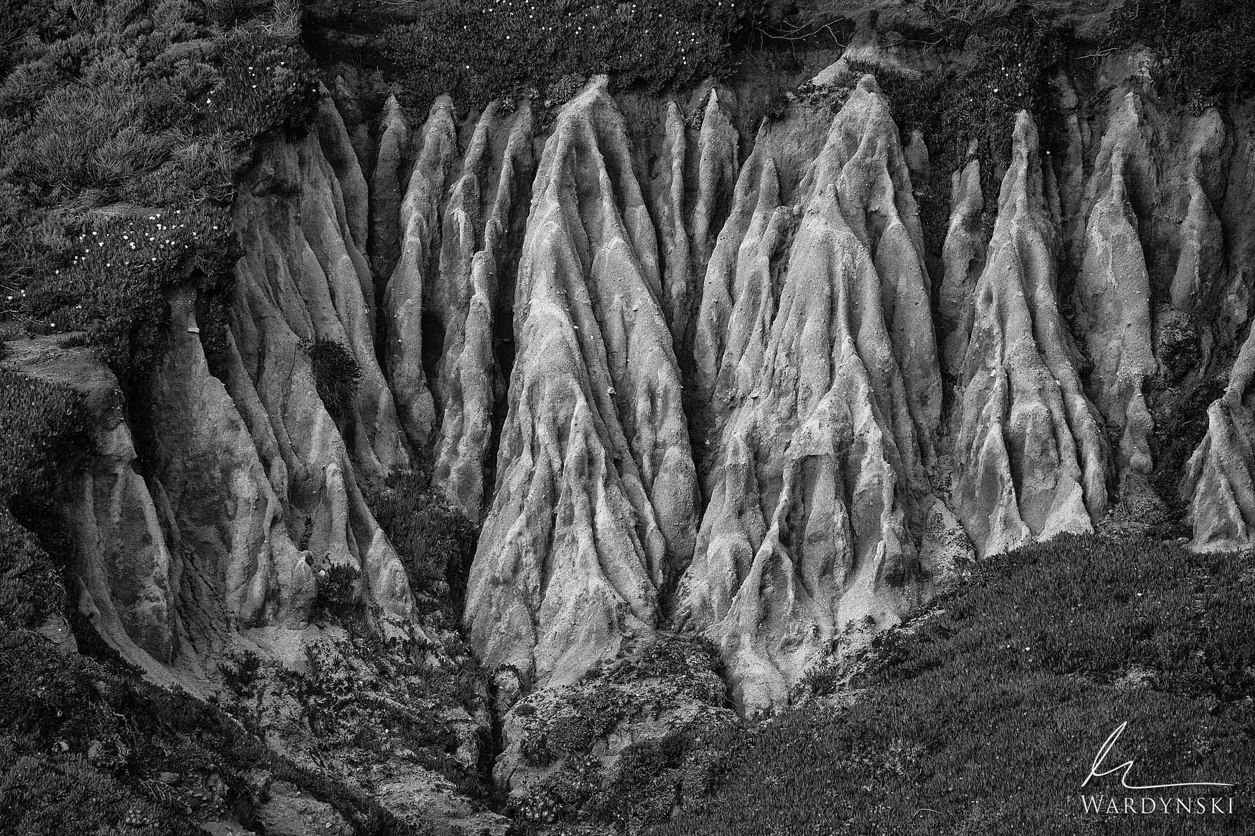 Black and White Fine Art Print | Limited Edition of 25  Eroded earth reveals the texture of miniature badlands in Carmel California...