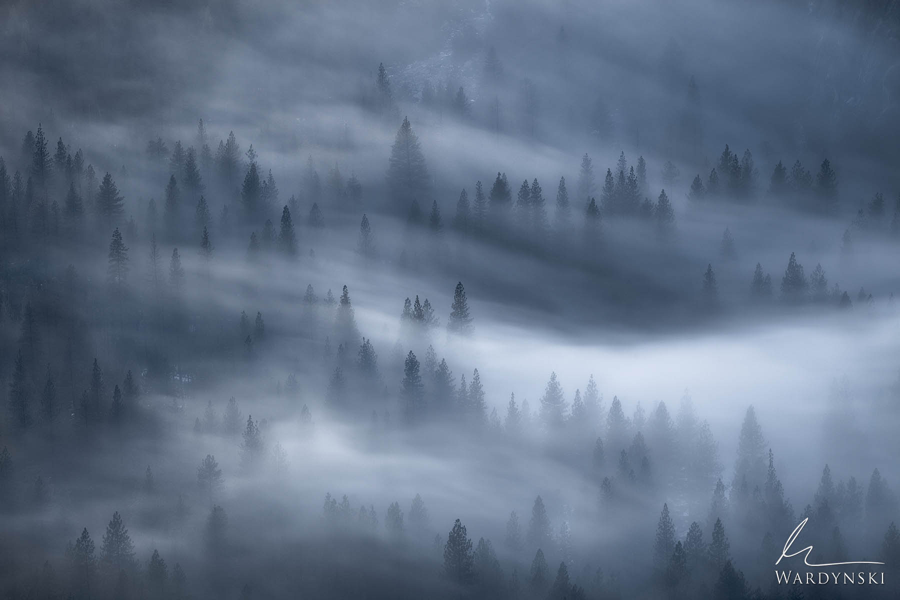 Fine Art Print | Limited Edition of 100  Low laying fog weaves its way through a blue Yosemite Valley on a cold winter evening...