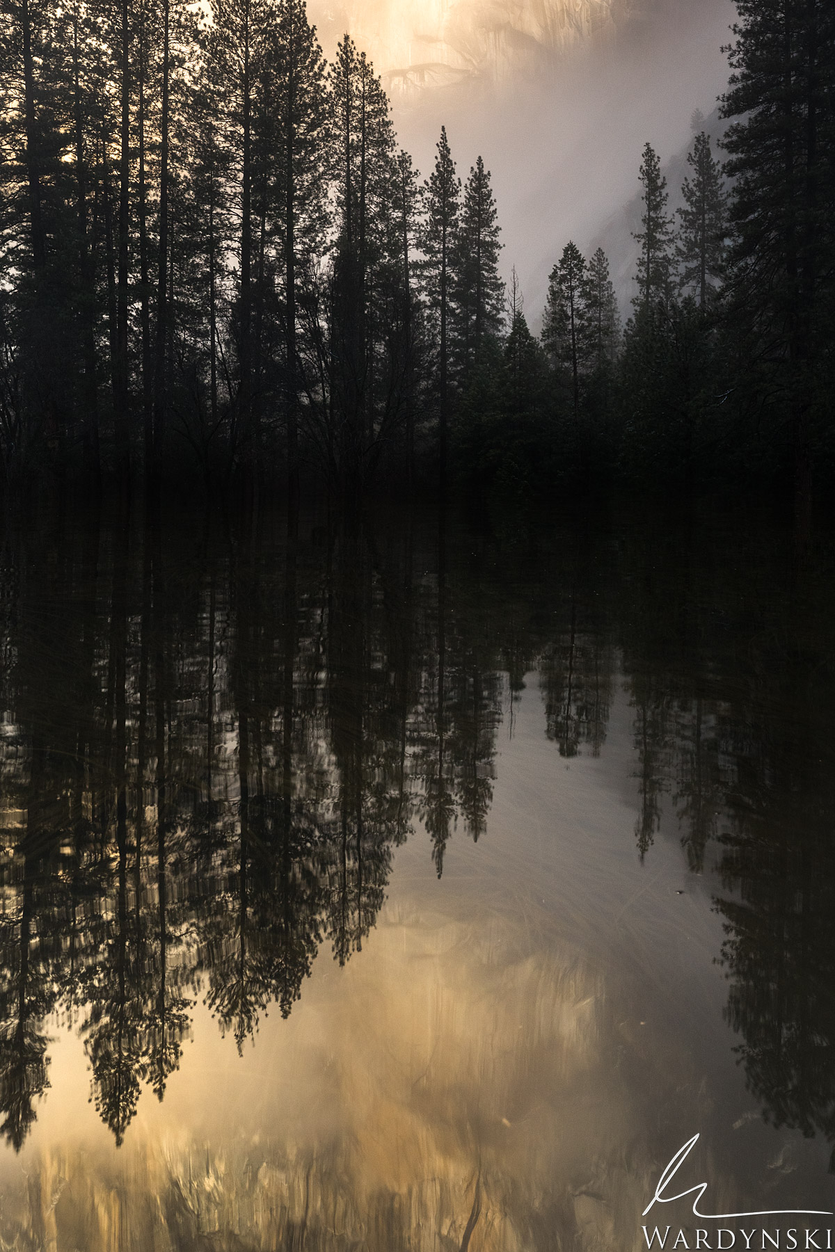 Fine Art Print | Limited Edition of 50  Golden reflections of El Capitan dance across a small pond in Yosemite Valley in the...