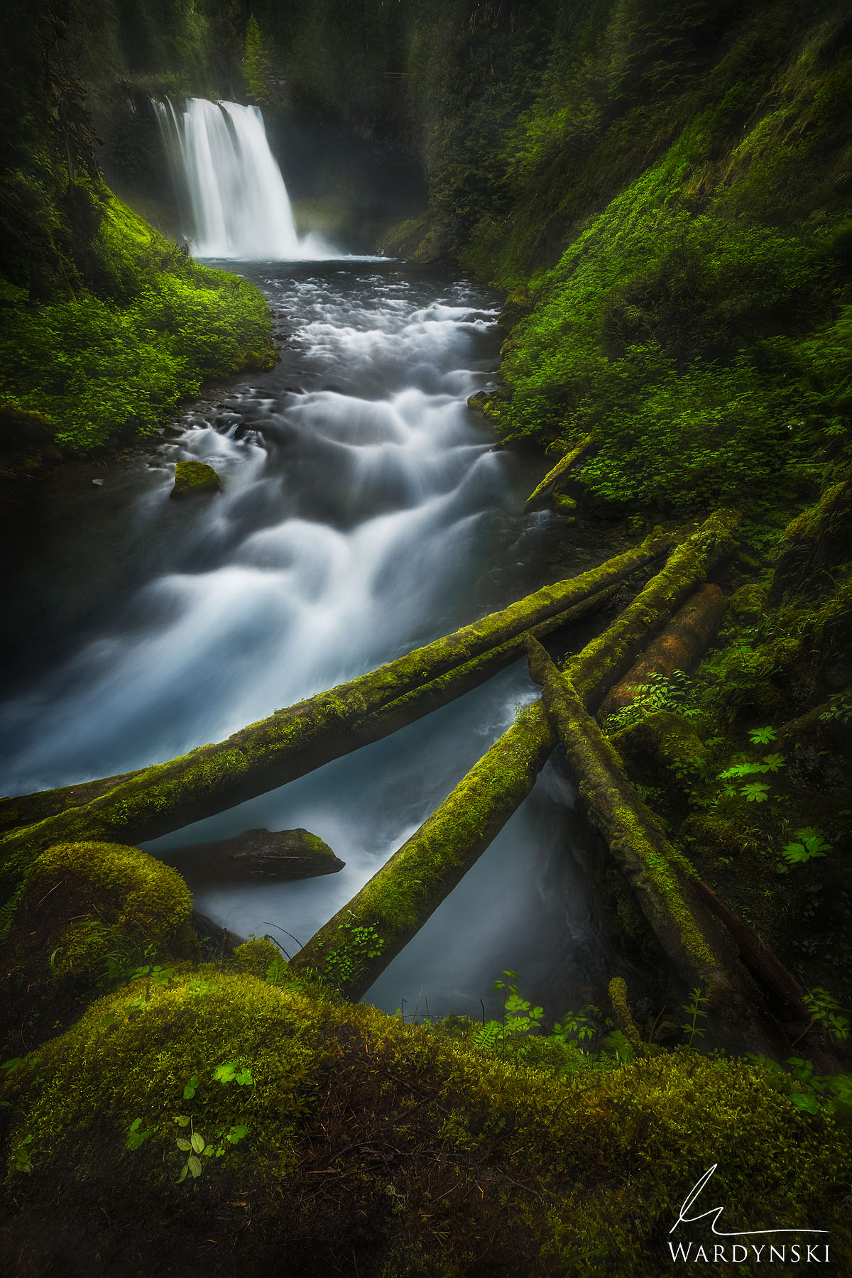 Fine Art Print | Limited Edition of 75 The Pacific North West is home to an active volcano chain. The brink of Koosah Falls is...