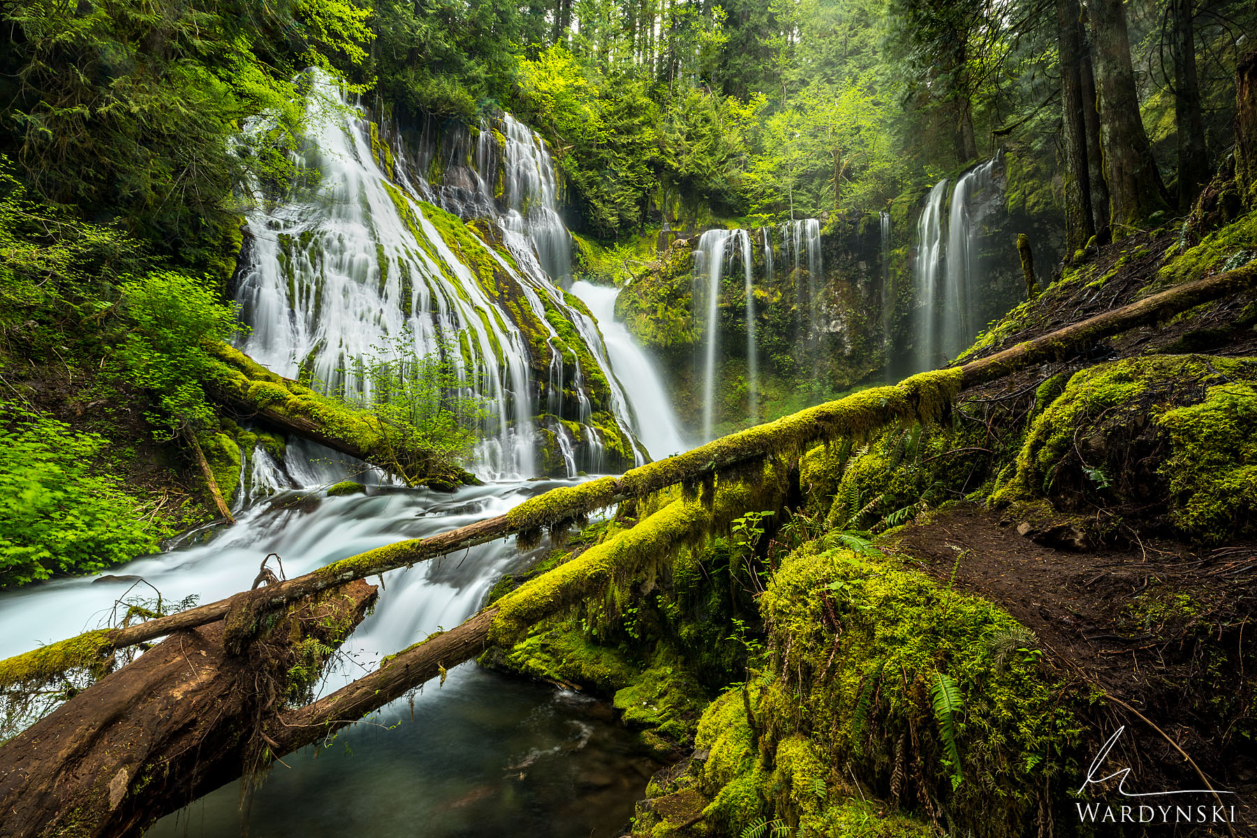 Fine Art Print | Limited Edition of 100  Waterfalls pour from the lush green forests of the Columbia River Gorge in Washington...