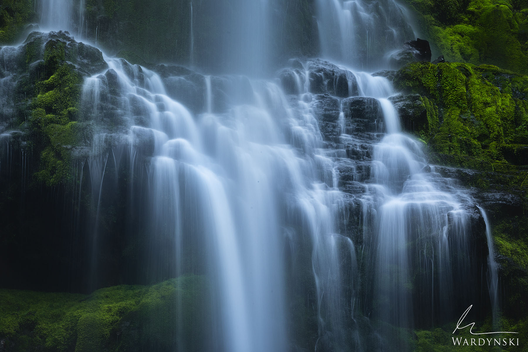 Fine Art Print | Limited Edition of 50 Water cascades down a staircase of moss covered lava rock in the Pacific Northwest. Proxy...