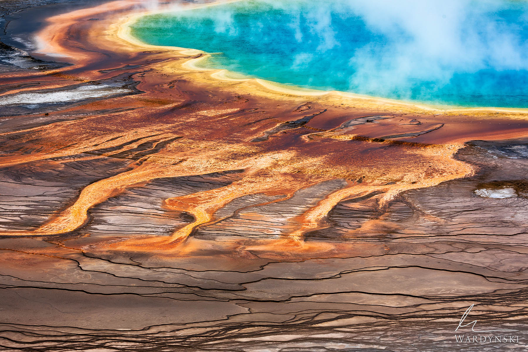 Fine Art Print | Limited Edition of 50  The Grand Prismatic Spring in  Yellowstone National Park is the largest hot spring in...