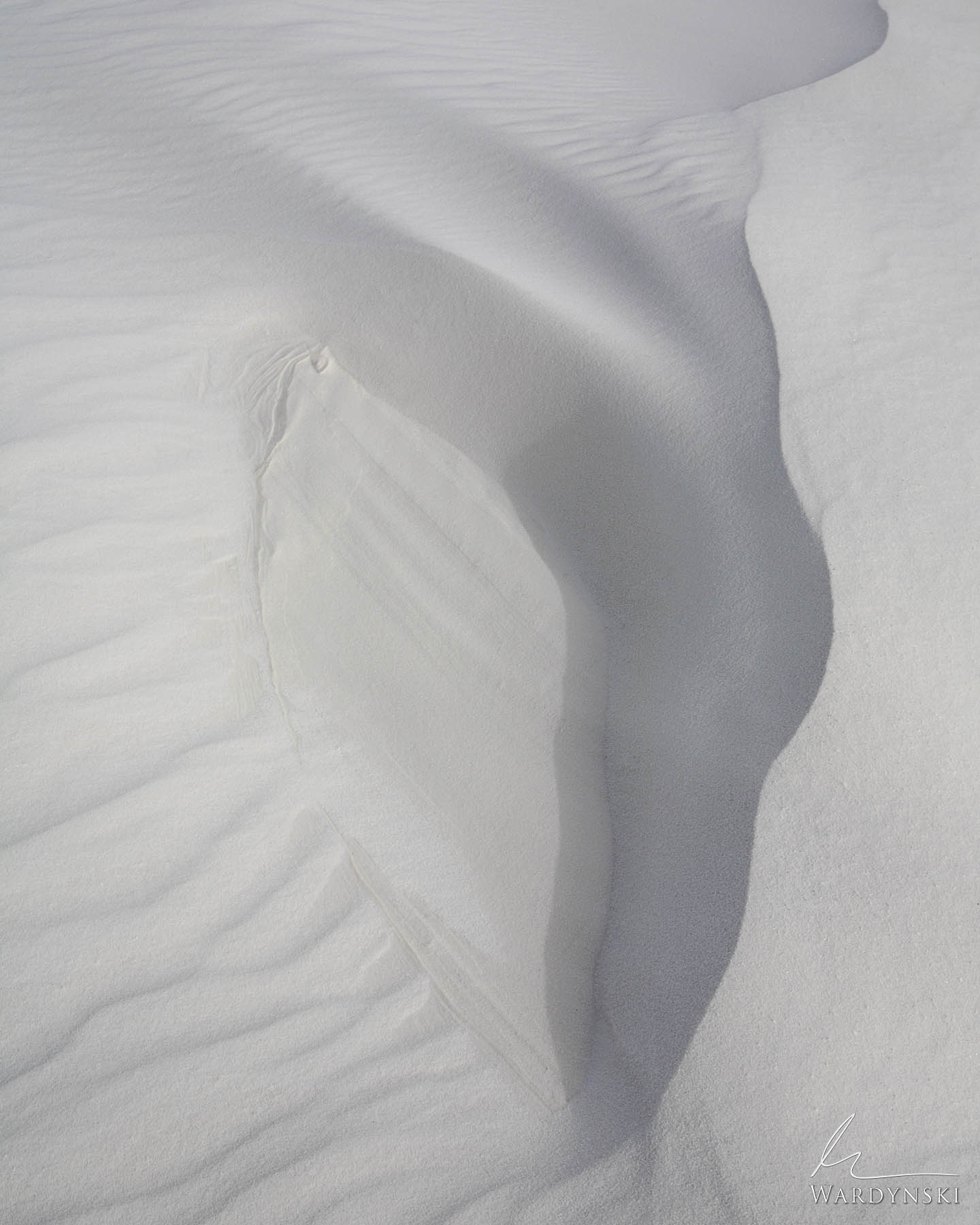 Fine Art Print   Limited Edition of 100 This is a typical case of nature mimicking nature. The details of White Sands National...
