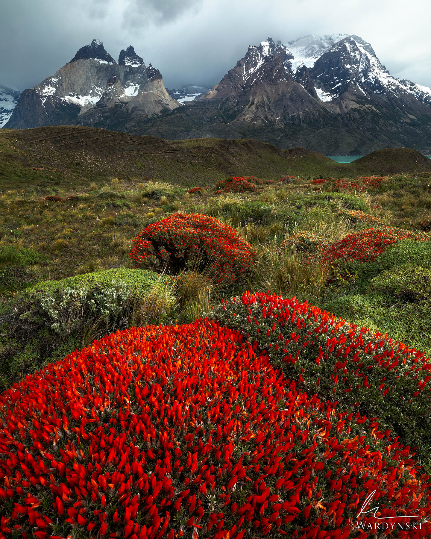 Fine Art Print | Limited Edition of 100  Spring in Patagonia a very unpredictable yet beautiful time of year. The wind will rip...