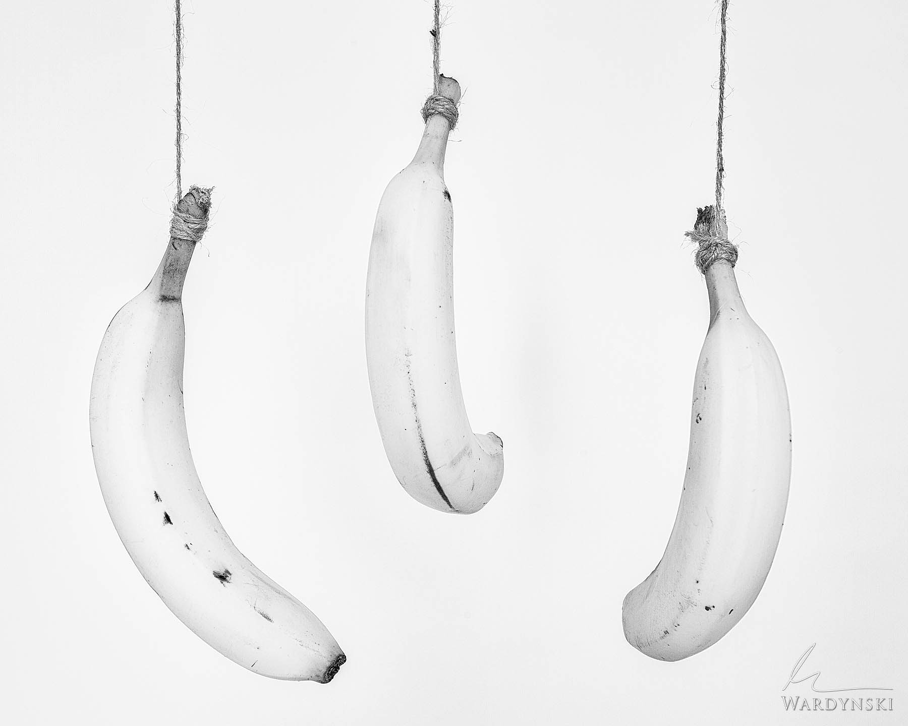 Black and White Fine Art Print | Limited Edition of 75 This still life photograph of three hanging bananas will make a wonderful...