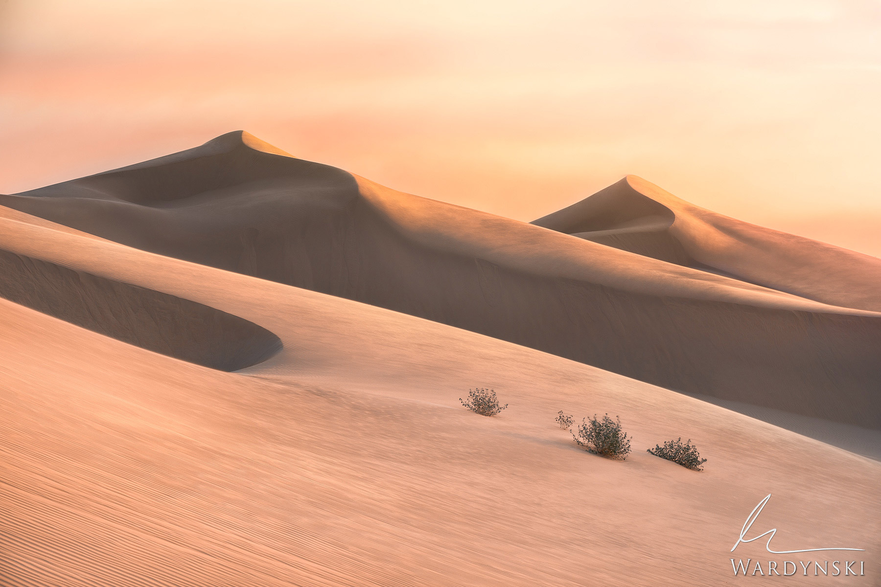 Fine Art Prints | Limited Edition of 100  The sun shines down on twin wind blown dunes in Southern California. The Imperial Sand...