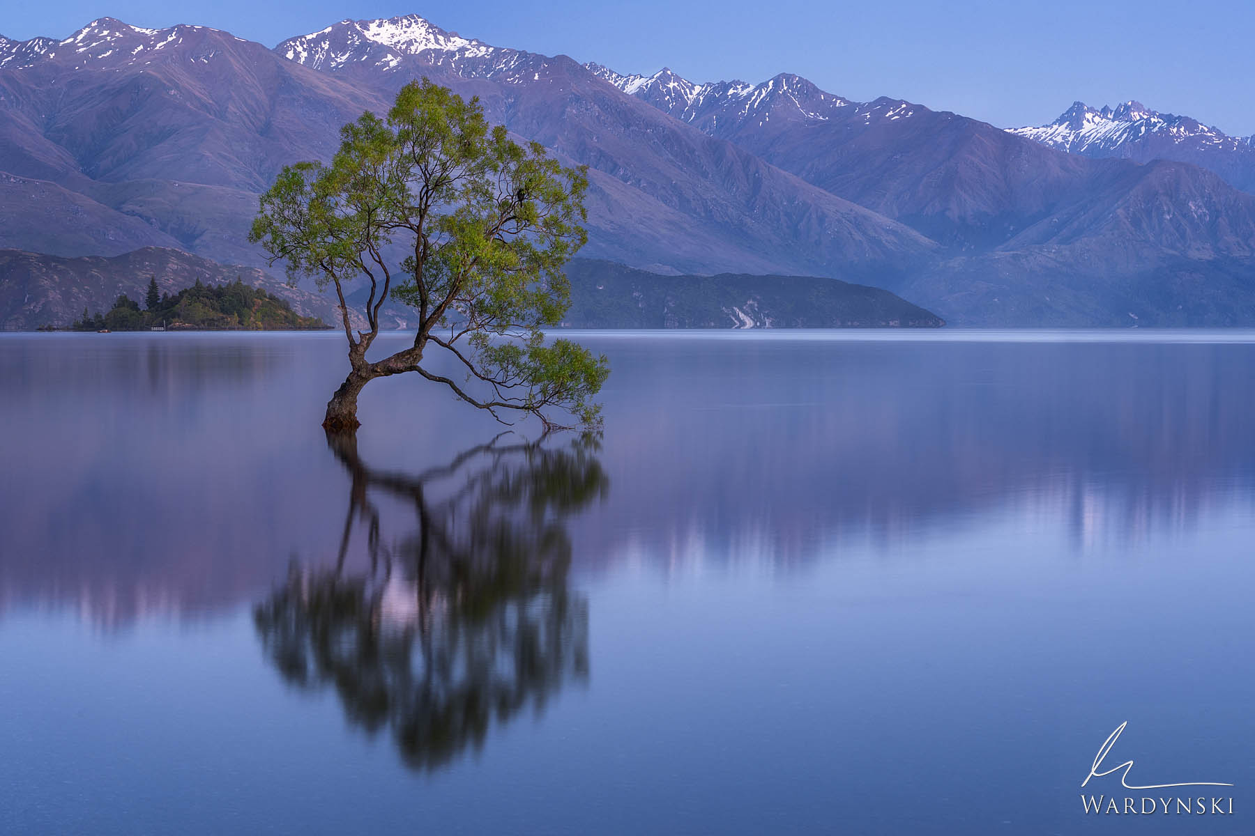 Fine Art Print | Limited Edition of 25  The Wanaka Tree grows out of the peaceful waters of sunrise in Southern New Zealand....