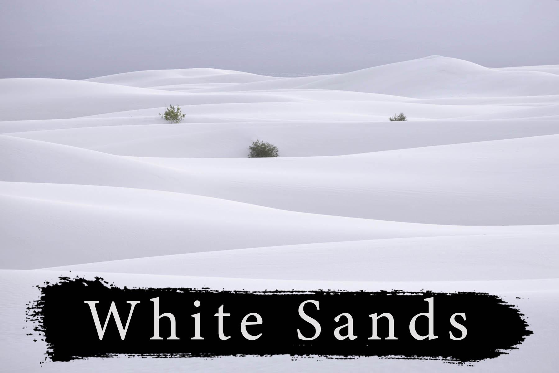 White Sands Photography Workshop