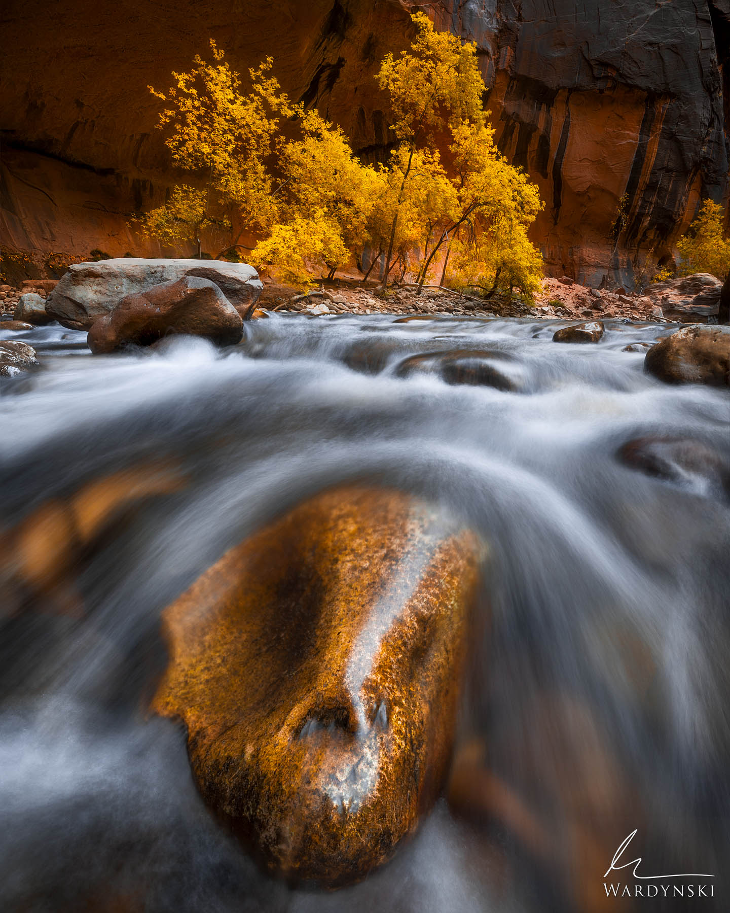 Fie Art Print | Limited Edition of 100 Water rushes down the Virgin River in Zion National Park, Utah. These waters have been...