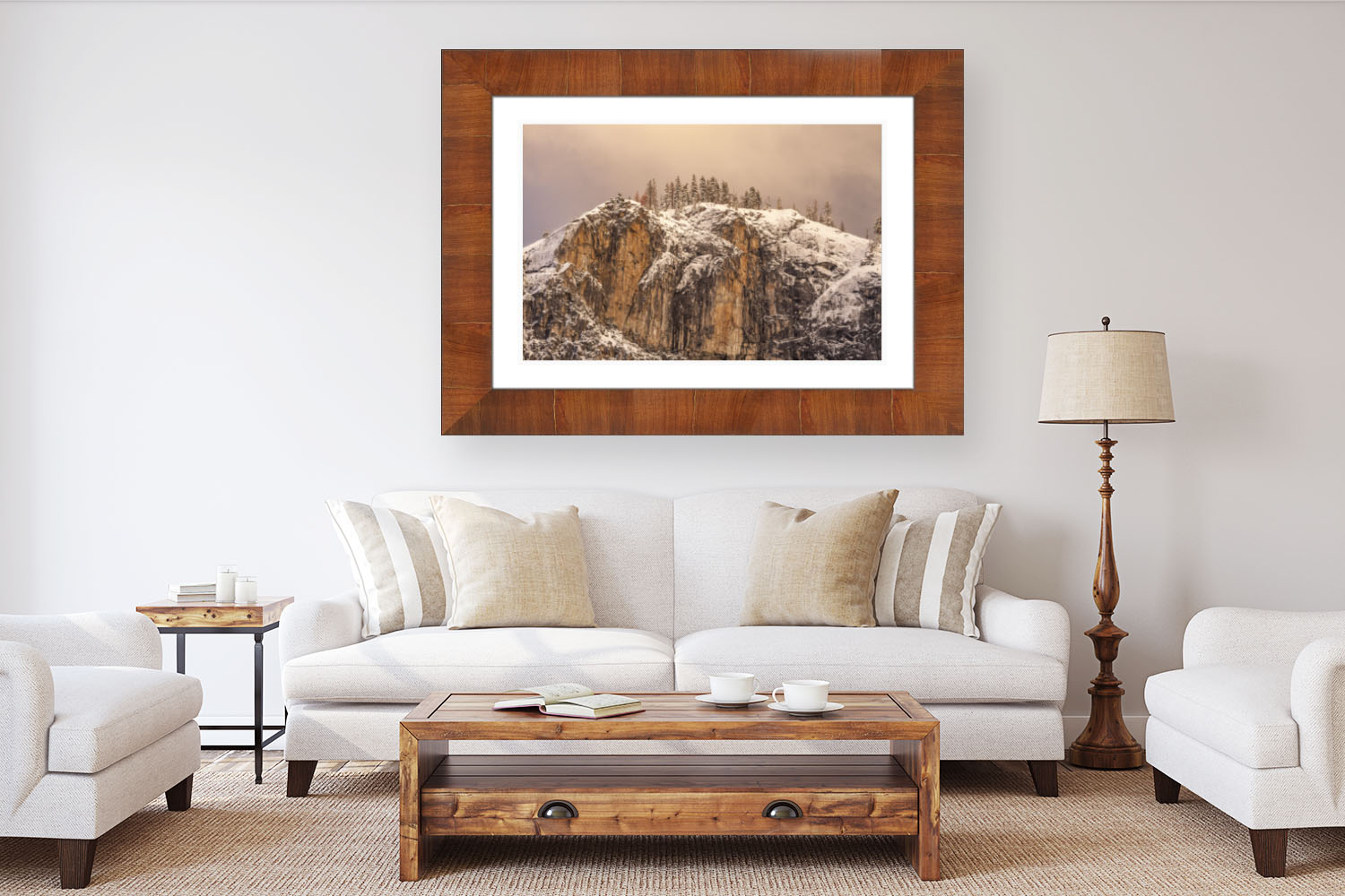 Premiere Plus Series- Roma Framed Acrylic Landscape Photography