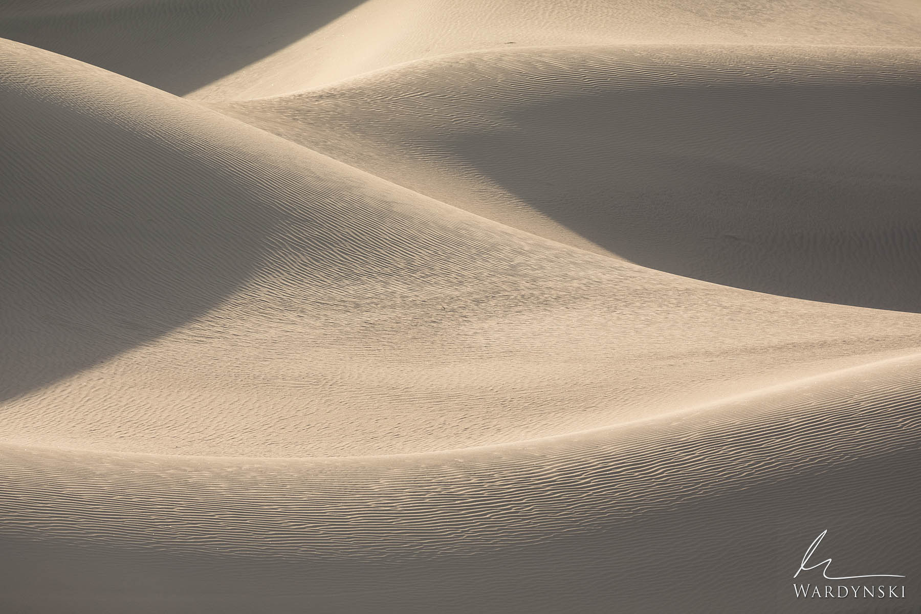Fine Art Print | Limited Edition of 25  Morning light graces the sensual curves of Mesquite Dunes in Death Valley. The sand dunes...